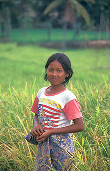 Lombok girl in rice fields near Belanting