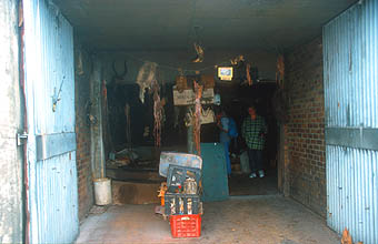 Cape Town Townships traditional healer herbs store