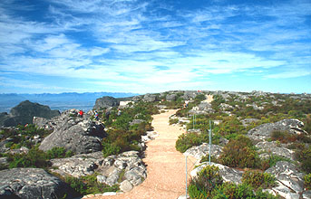 Cape Town walking path on top of Table Mountain