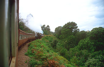 Outeniqua Choo Tjoe steam train en route