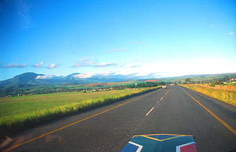 road from Albertinia to Swellendam 3
