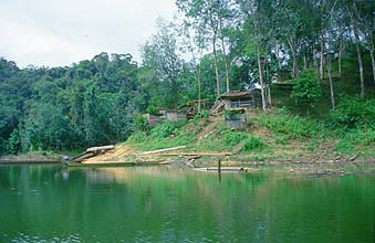 Iban Longhouses on the shores of a jungle river