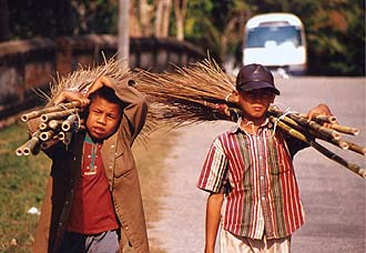 Boys with bamboo besom, Luang Prabang
