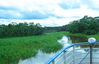 Manaus: Boot-transfer to the Amazon Village