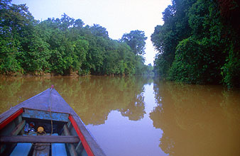 Miri boat transfer on Sungai Niah river to Niah Caves National Park