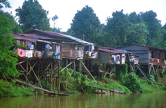 Miri houses on the Sungai Niah river 2