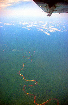 Miri jungle river from aircraft on flight from Mulu to Miri
