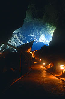 Gunung Mulu National Park Deer Cave 2