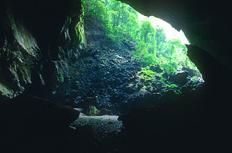 Gunung Mulu National Park Deer Cave open end