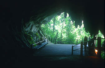 Gunung Mulu National Park Wind Cave entrance