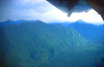 Gunung Mulu National Park view on mountains from aircraft
