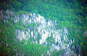 Gunung Mulu National Park view on the pinnacles from aircraft 2