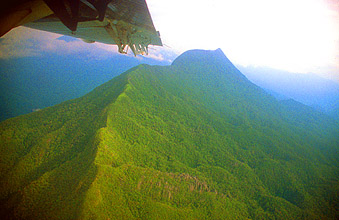 Gunung Mulu National Park view on the pinnacles from aircraft 3