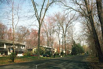 NYC_Fishkill_Typical_Houses_4_with_trees.jpg