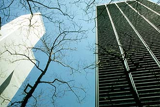 NYC_New_York_WTC_and_smaller_skyscraper_with_trees.jpg