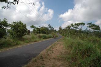 DPS Bali street from Pelaga to Kintamani 06 3008x2000
