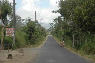 DPS Bali street from Pelaga to Kintamani 07 3008x2000