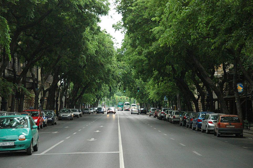 Park Avenue Park City Ut