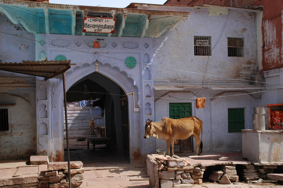 Images of rajasthani houses