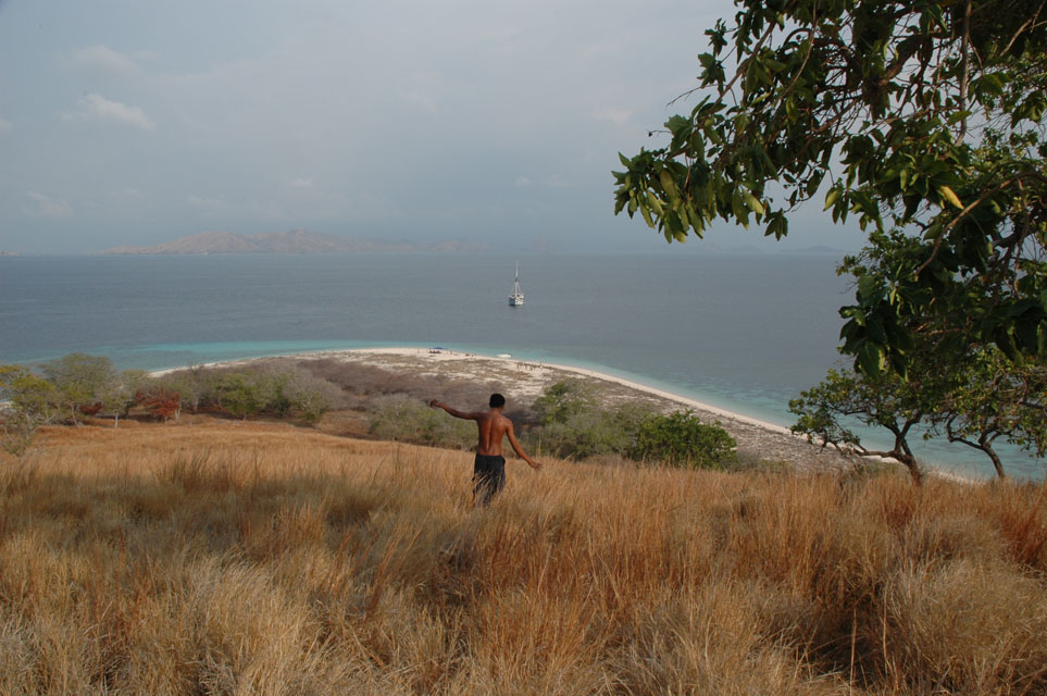 Komodo Island Movie Komodo Island Images by
