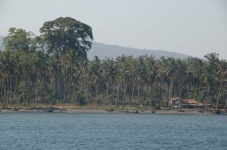 AMI Lombok Ombak Putih sailing ship in Labuhan Kayangan harbour landscape near Menangabaris with giant trees 3008x2000