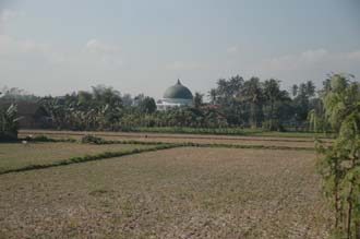 AMI Lombok mosque with rice field 3008x2000